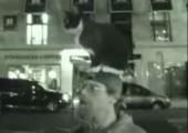 Katze aufm Kopp
