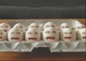 Horrorfilm für Eier