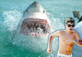 Justin Bieber bei Hai-Attacke gestorben