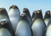 Pinguine vs. Killerwal