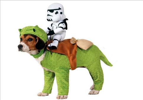 Star Wars Hund