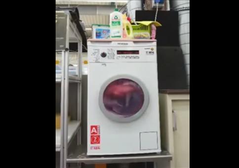 Kühlschrank als Waschmaschine getarnt