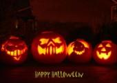 Hornoxe.com - Halloween Mixed Picdump