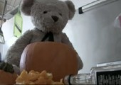 Misery Bear - Dawn of the Ted