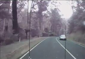 Eine Autofahrt durch den Wald bei starkem Wind