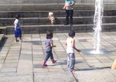 Wasserfontäne bringt Kind Backflip bei