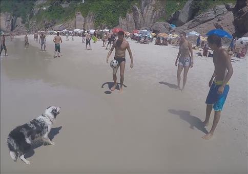 Am Strand mit Hundehilfe den Ball in der Luft halten