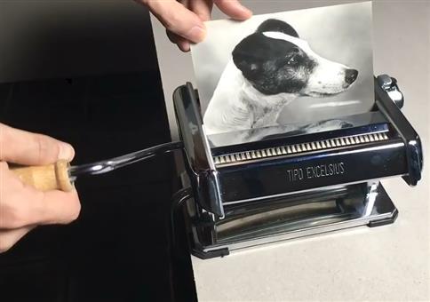Aus einem Hund mach vier