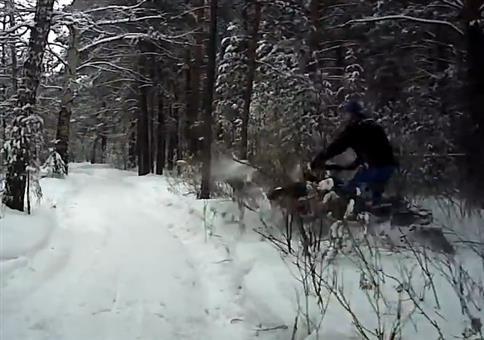 Schneemobil Anfänger