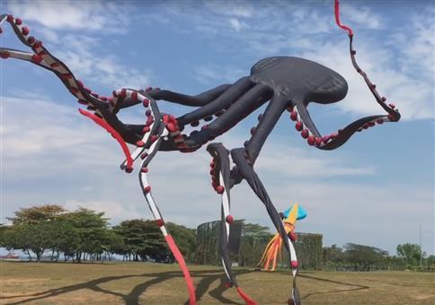 Riesiger Octopus-Drachen