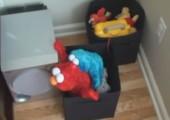 Elmo und das Krümelmonster haben Spaß