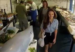 Streich: Der Hai im Fischladen
