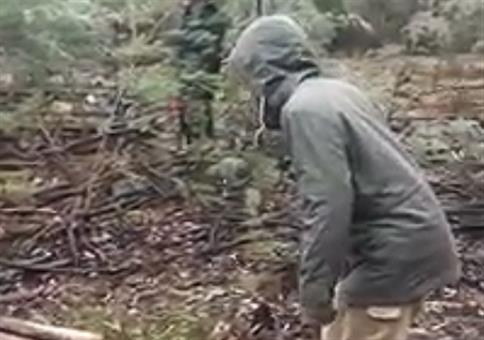 Gegen einen toten Baum springen - Doppel FAIL