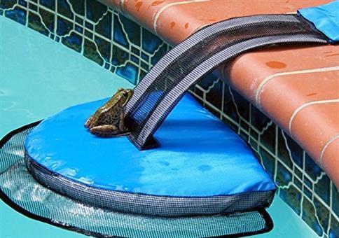 Eine gute Tat am Pool