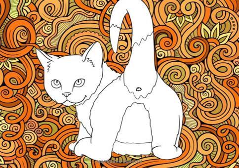Katzenarsch
