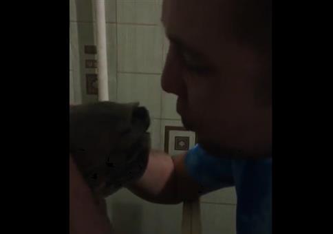Die Schildkröte küssen und ablecken