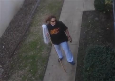 Wenn sich die Crackhead Nachbarn im Hinterhof bekriegen