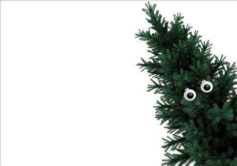 Dieses Jahr braucht ihr nur 2 Weihnachtsbaumkugeln!