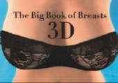 Big Book of Breasts in 3D