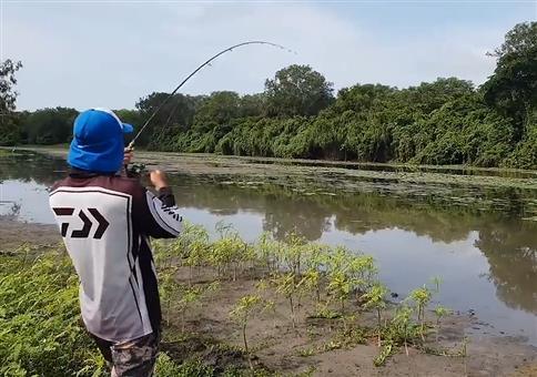 Gemütlich beim Fische fangen, als plötzlich..