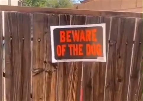 Vorsicht Hund!