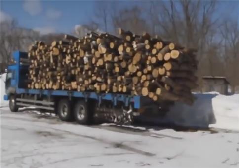 Holz abladen Like a Boss!