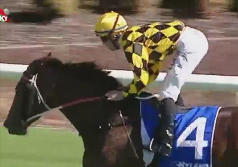 Pferderennen mit arschknappen Vorsprung