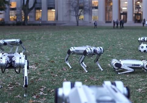 Ferngesteuerte Mini-Cheetah-Roboter