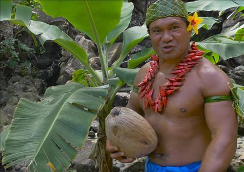 Verschiedene Methoden um eine Kokosnuss zu öffnen
