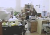 Tarnung im Büro extrem