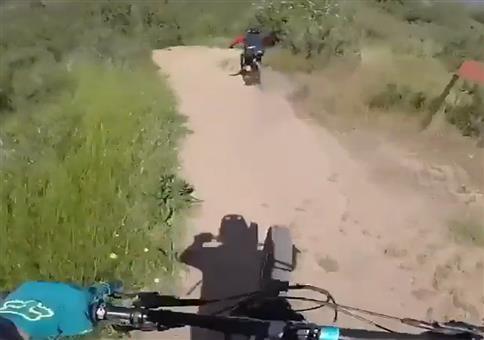 Downhill Auffahrunfall