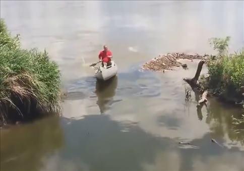 So einfach ist es Fische zu fangen