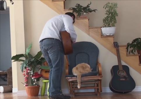 Instant Karma: Gitarre spielen, aber ohne Katze