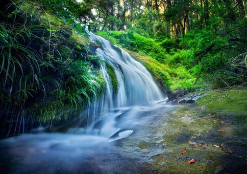 Wasserfall Entspannungsvideo