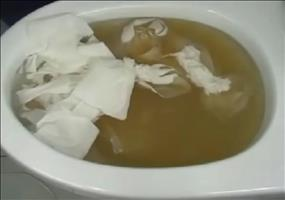 Verstopfte Toilette? Das kann man dagegen tun!