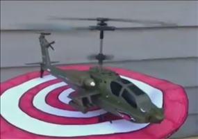 Tierischer Hubschrauberstart