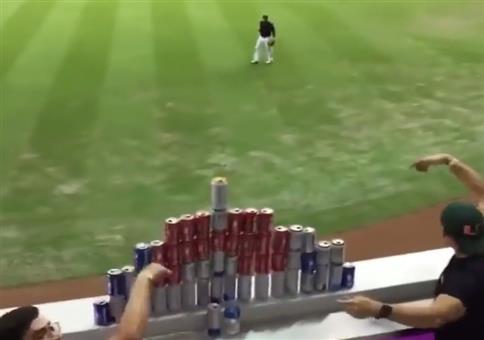 Dosenwerfen beim Baseball