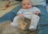 Baby vs. Katze