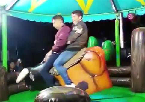 Two guys, one bull