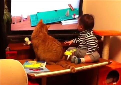 Katze hockt mit Kumpel vor der Glotze