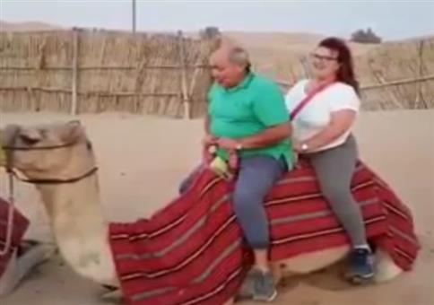 Ungünstiger Schwerpunkt auf Kamel