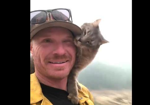 Gerette Katze schmust mit ihrem Retter