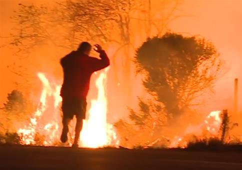 Kleinen Hasen retten bei Waldbrand in Kalifornien
