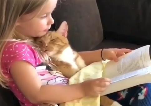 Mädchen liest ihrer Katze was vor