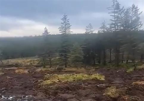 Landschaft schwimmt weg