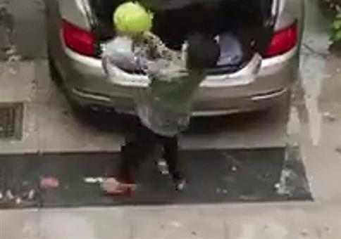 Die Rache der Wassermelone