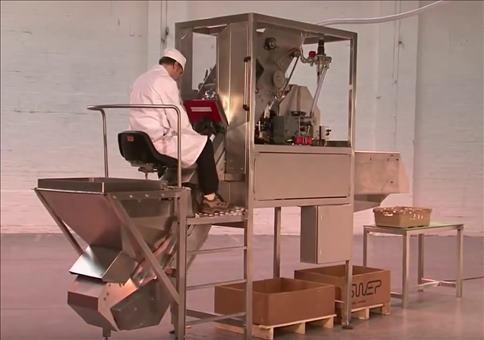 Zwiebelschälmaschine