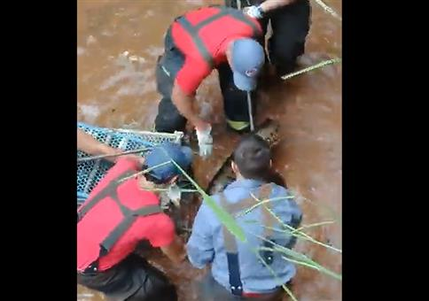 Feuerwehr rettet Anakonda