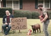 Ziege zu verkaufen
