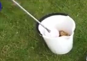 Lifehack: Sack Kartoffeln schälen in unter 30 Sekunden